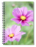 Two Purple Cosmos Flowers Spiral Notebook