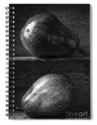 Two Ripe Pears In Black And White Spiral Notebook