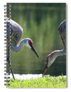 Two Sandhills By The Water Spiral Notebook