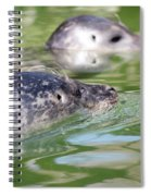 Two Seal Swimming Nature Scene Spiral Notebook