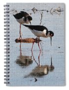 Two Stilts Walk The Pond Spiral Notebook