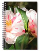 Two Striped Camellias Spiral Notebook