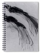 Two Studies Of A Bird Of Paradise 1630 Spiral Notebook