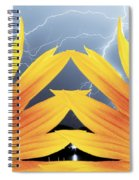 Two Sunflower Lightning Storm Spiral Notebook
