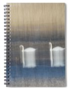 Two Swans In Movement Spiral Notebook
