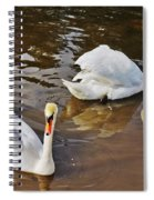 Two Swans On Spring Water Spiral Notebook