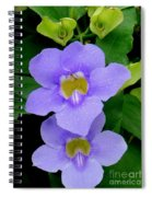 Two Thunbergia With Dew Drops Spiral Notebook