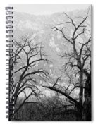 Two Trees Flatirons Boulder Colorado Spiral Notebook