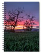 Two Trees In A Purple Sunset Spiral Notebook