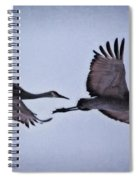 Two Under The Moon Spiral Notebook