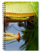 Two Victoria Water Lilypads Spiral Notebook