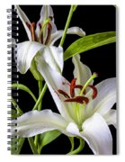 Two Wonderful Lilies  Spiral Notebook