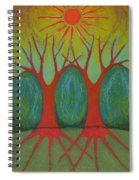 Two Worlds Spiral Notebook
