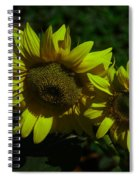 Two Yellow Beauties  Spiral Notebook