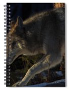 Twords The Sunrise Spiral Notebook