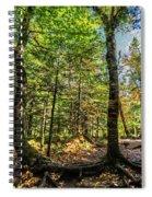 U Shaped Trees Cascade Mountain Ny New York Spiral Notebook