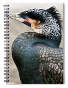 Ugly Bird Spiral Notebook