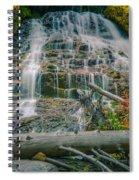 Umbrella Falls Spiral Notebook