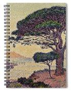 Umbrella Pines At Caroubiers Spiral Notebook