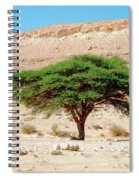 Umbrella Thorn Acacia, Negev Israel Spiral Notebook