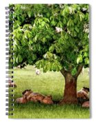 Umbrella Tree Spiral Notebook