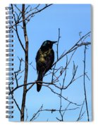 Uncommon Grackle Spiral Notebook
