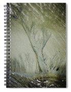 Under A Seashell Moon Spiral Notebook