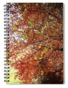 Under An Autumn Sky - No.2 Spiral Notebook