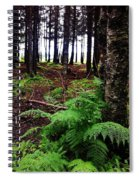 Under The Alaskan Trees Spiral Notebook