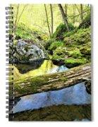 Under The Fallen 2 Spiral Notebook