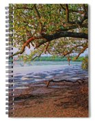 Under The Mangroves Spiral Notebook