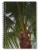 Under The Tree Spiral Notebook