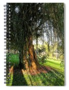 Under The Weeping Willow Spiral Notebook