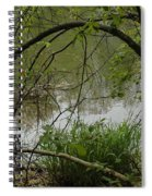 Under The Wild Wood Arch Spiral Notebook