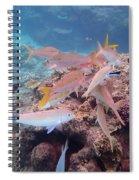 Under Water Fiji Spiral Notebook
