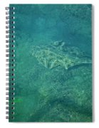 Under Water View Spiral Notebook