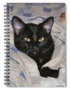 Undercover Kitten Spiral Notebook