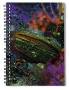 Undersea Clam Spiral Notebook