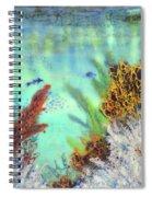 Underwater #2 Spiral Notebook