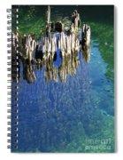 Underwater Cypress Stump Spiral Notebook
