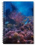 Underwater Paradise Spiral Notebook