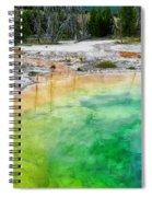 Underworld Spiral Notebook
