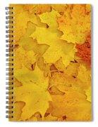 Understory Spiral Notebook