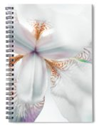 Unearthly Spiral Notebook