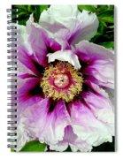 Unfolding Beauty Spiral Notebook