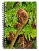 Unfolding Treefern Spiral Notebook
