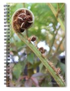 Unfurling Spiral Notebook