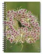 Unfurling Nature Macro Square Spiral Notebook