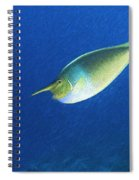 Unicorn Fish 2 Spiral Notebook