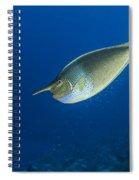 Unicorn Fish Spiral Notebook